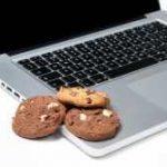 Para que são usados os cookies de sessão?