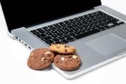 Para que são usados os cookies de sessão